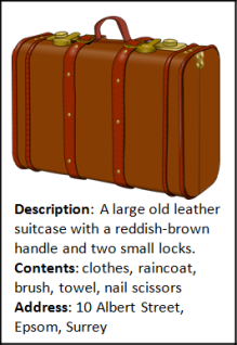 02 - Luggage pic.png